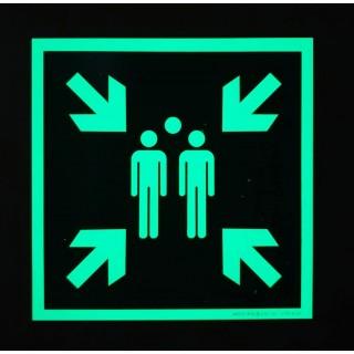 Señal Punto de encuentro fotoluminiscente E007